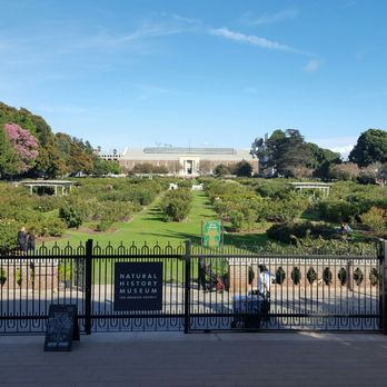 Exposition Park Rose Garden - 991 Photos & 173 Reviews - Botanical ...