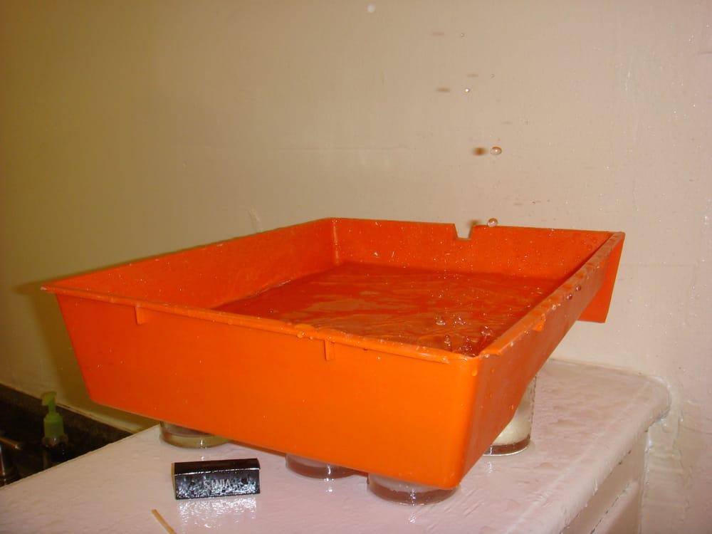 Leak 4 In Dining Room Area 901 Irolo Street Los Angeles CA 90006