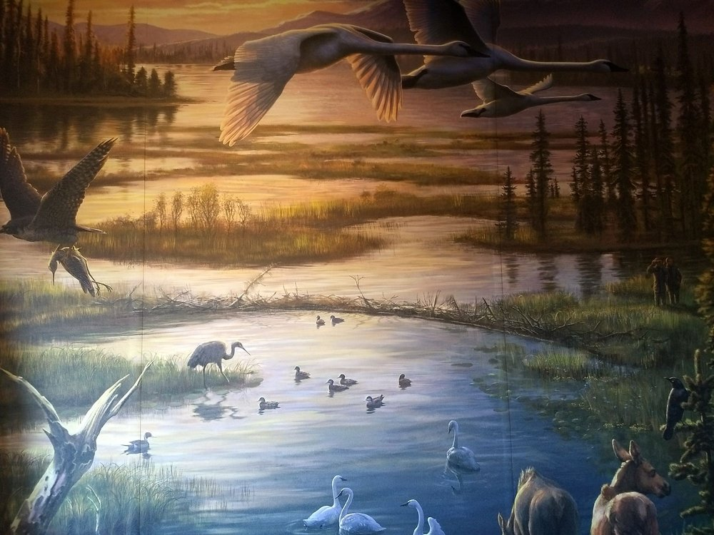 Tetlin National Wildlife Refuge: Tetlin, AK