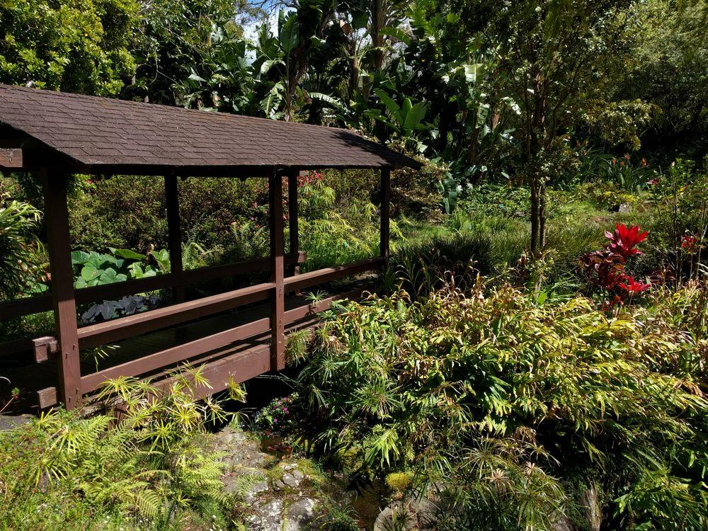 Kula Botanical Gardens 195 Photos 54 Reviews Park Forests 638 Kekaulike Ave Kula Hi