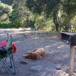Arroyo Seco Campground - 81 Photos & 107 Reviews