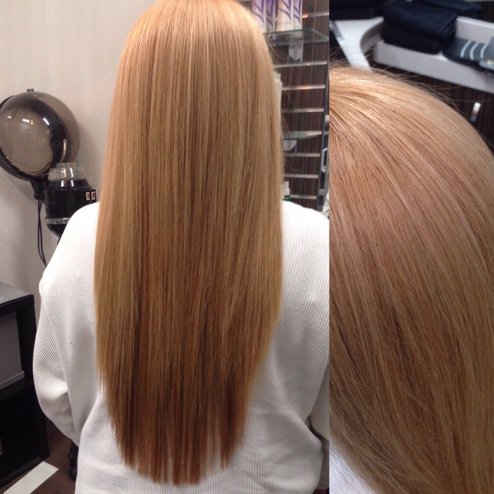 Certifiably Organic All Nutrient Hair Color Products And Global