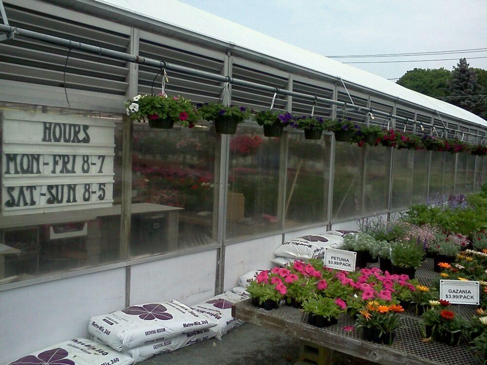 Patrick Lyons Greenhouses: 303 Central St, Foxborough, MA