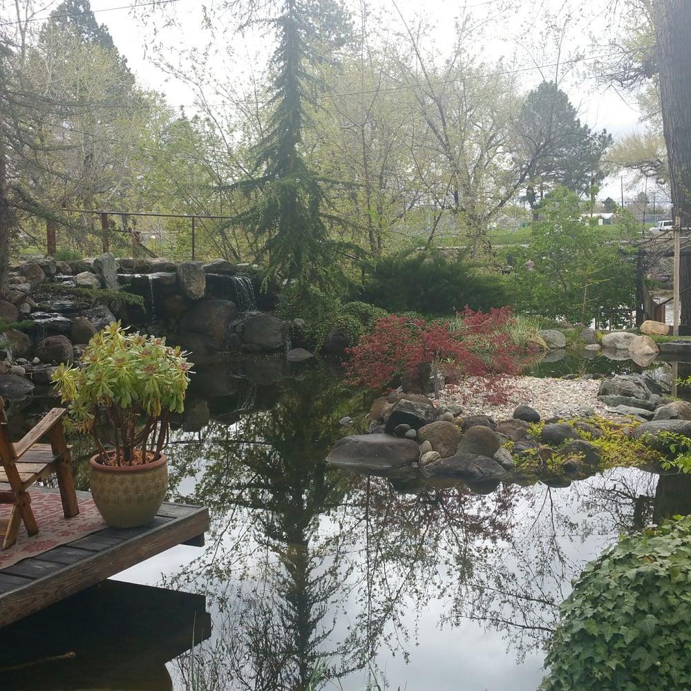 Beautiful Pond Yelp