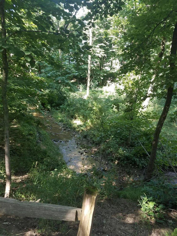Grant Woods Forest Preserve: Lake Villa, IL