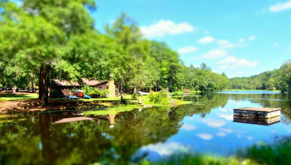 Poinsett State Park: 6660 Poinsett Park Rd, Wedgefield, SC