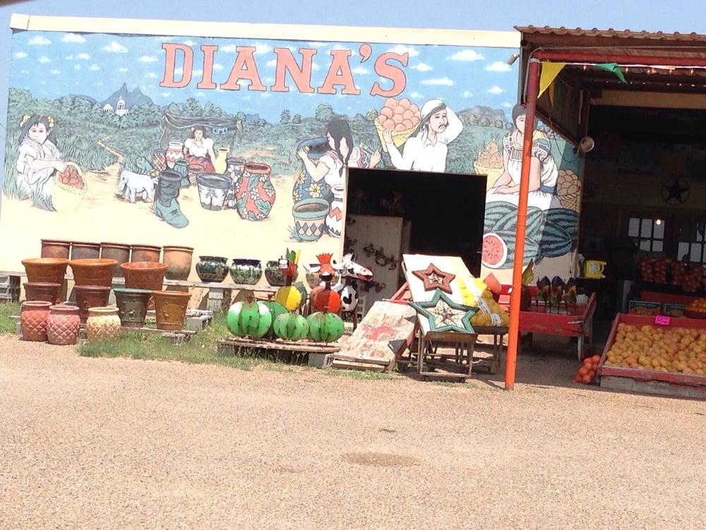 Diana's Nursery & Patio: 10016 Expressway 77 N, lyford, TX