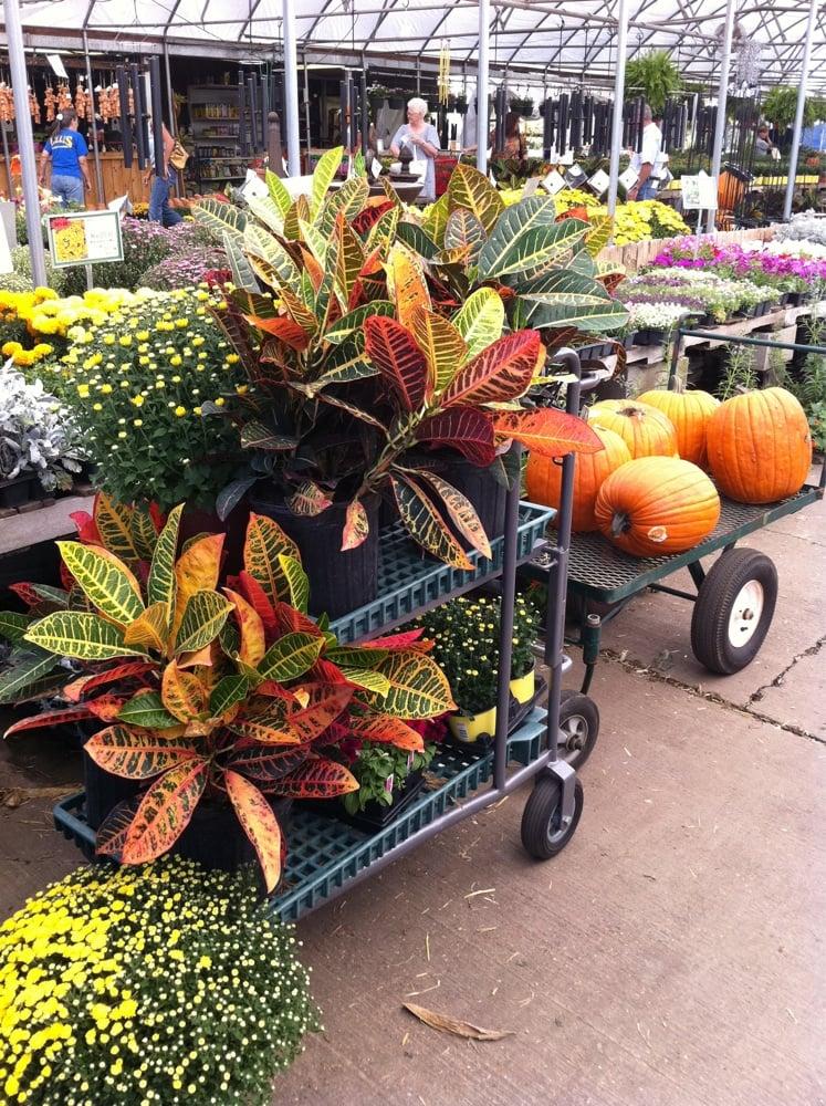 Ellis Home & Garden: 6328 Richmond Rd, Texarkana, TX