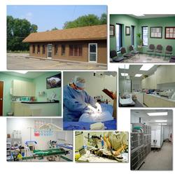 Allegheny Veterinary Associates - 10 Reviews - Veterinarians