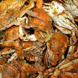 3 I Got Your Crabs