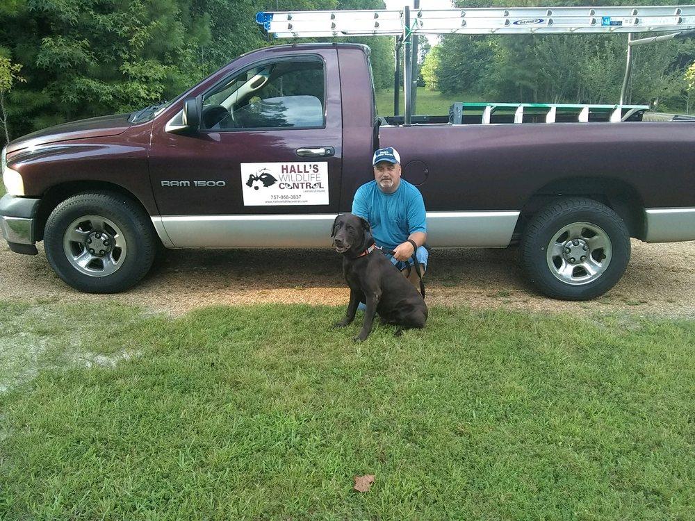 Hall's Wildlife Control: 7000 Gates Rd, Suffolk, VA