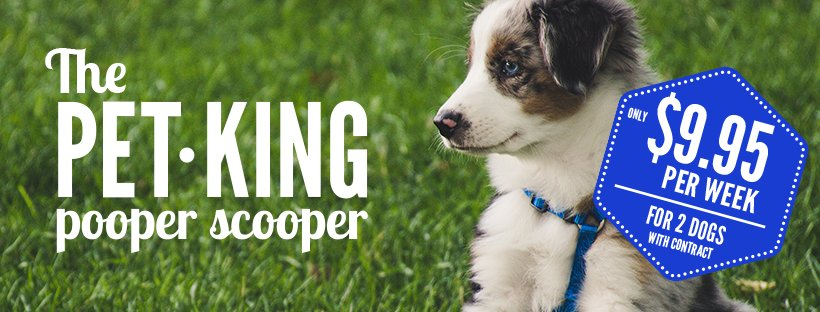 The Pet King Pooper Scooper Services: Sugar Grove, IL