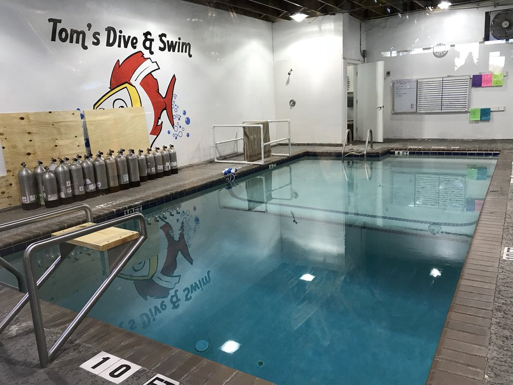 Tom's Dive & Swim