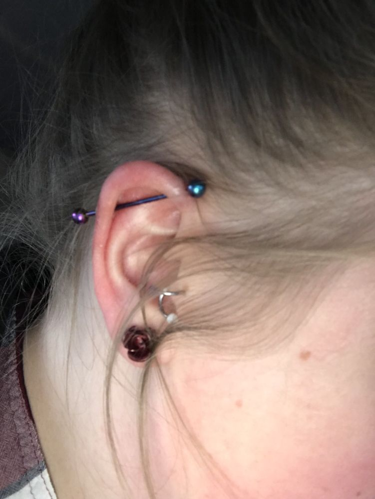 Fraidy Cats' Professional Body Piercing: 1319 Frost Ave, Maplewood, MN