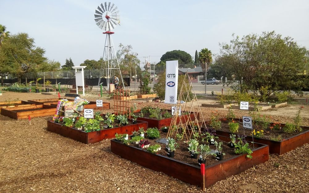Photo Of Organic Harvest Gardens   Long Beach, CA, United States. Staging Of