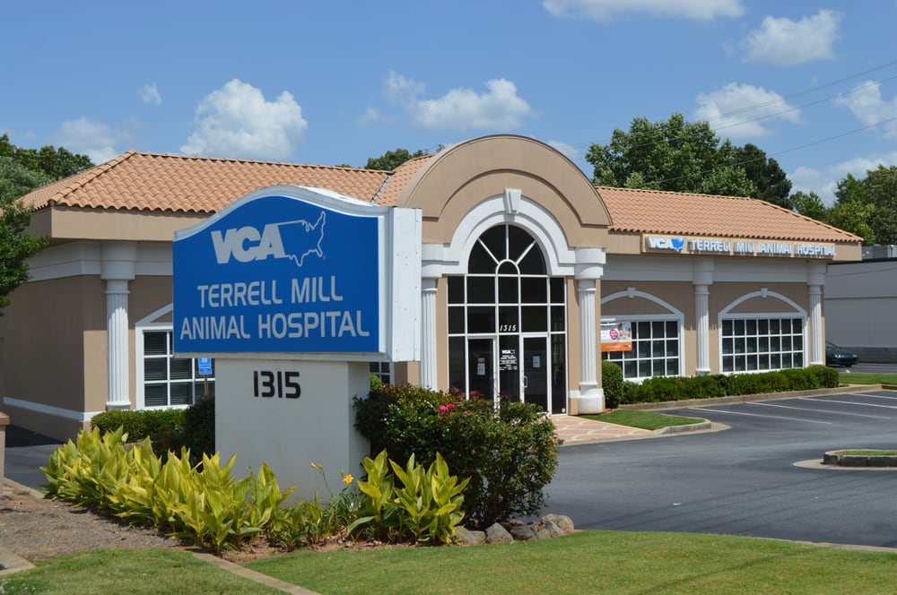 VCA Terrell Mill Animal Hospital - 2019 All You Need to Know