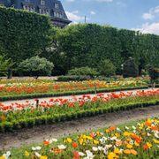 Jardin des Plantes - 127 Photos & 75 Reviews - Botanical Gardens ...