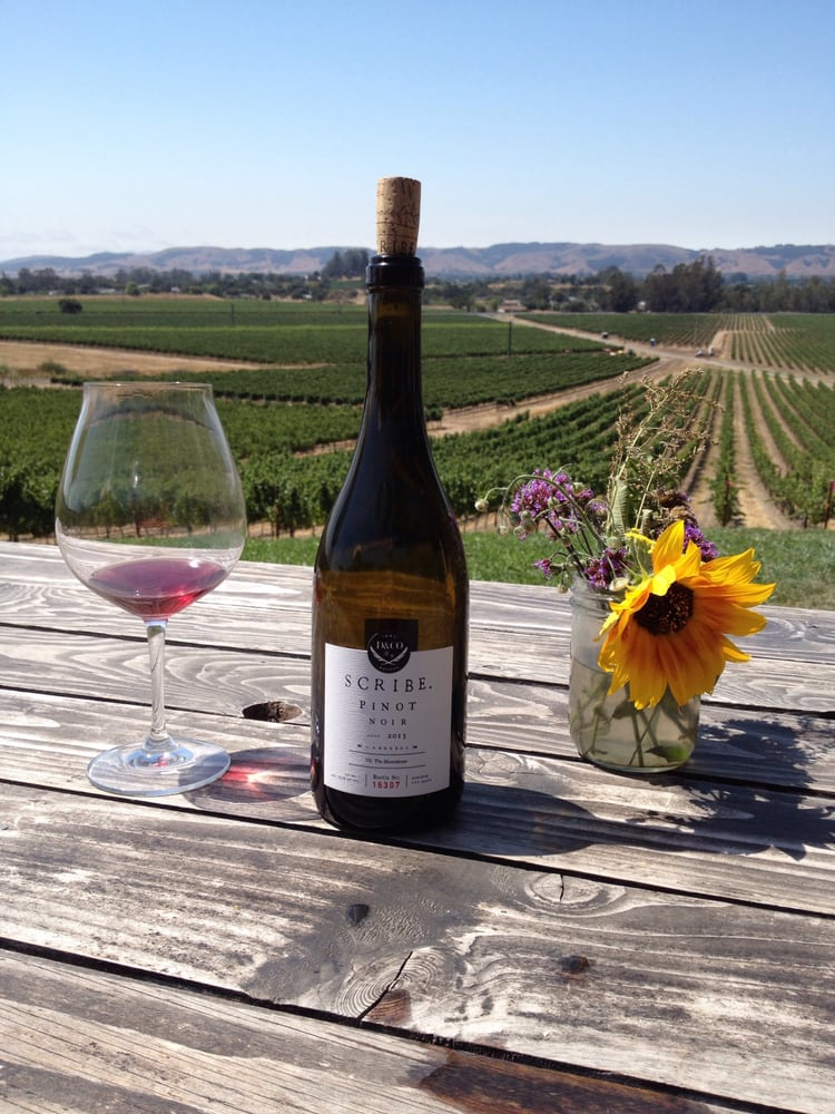 Valet of the Moon Wine Tours: Sonoma, CA