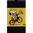 Waterfront Bike Rental: 700 E Waterfront Dr, Homestead, PA