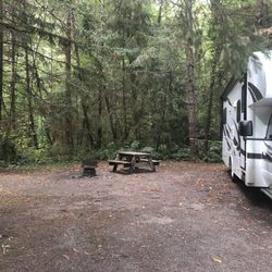Mystic Forest RV Park - (New) 22 Photos & 15 Reviews - RV Parks