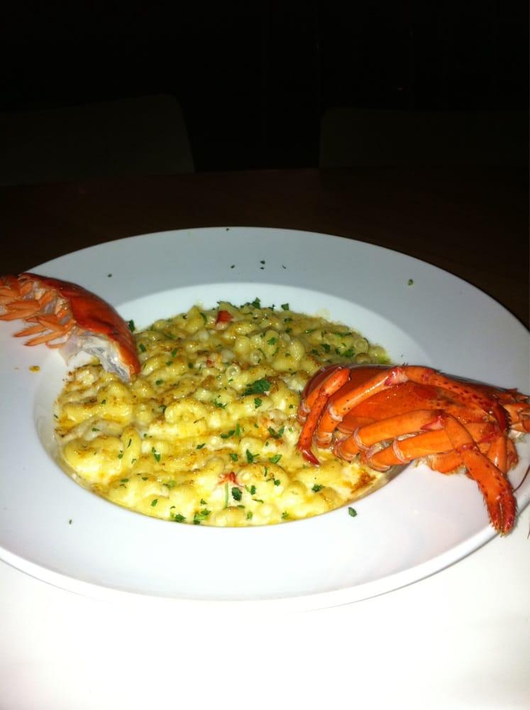 Lobster Mac & cheese - Yelp