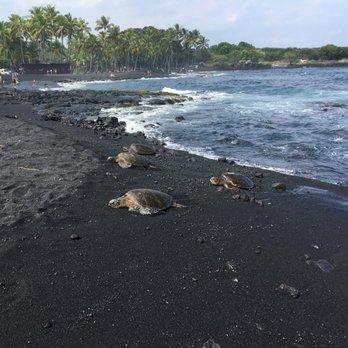 Kona Black Sand Beach The Best Beaches In World Punalu U Island Hawaii