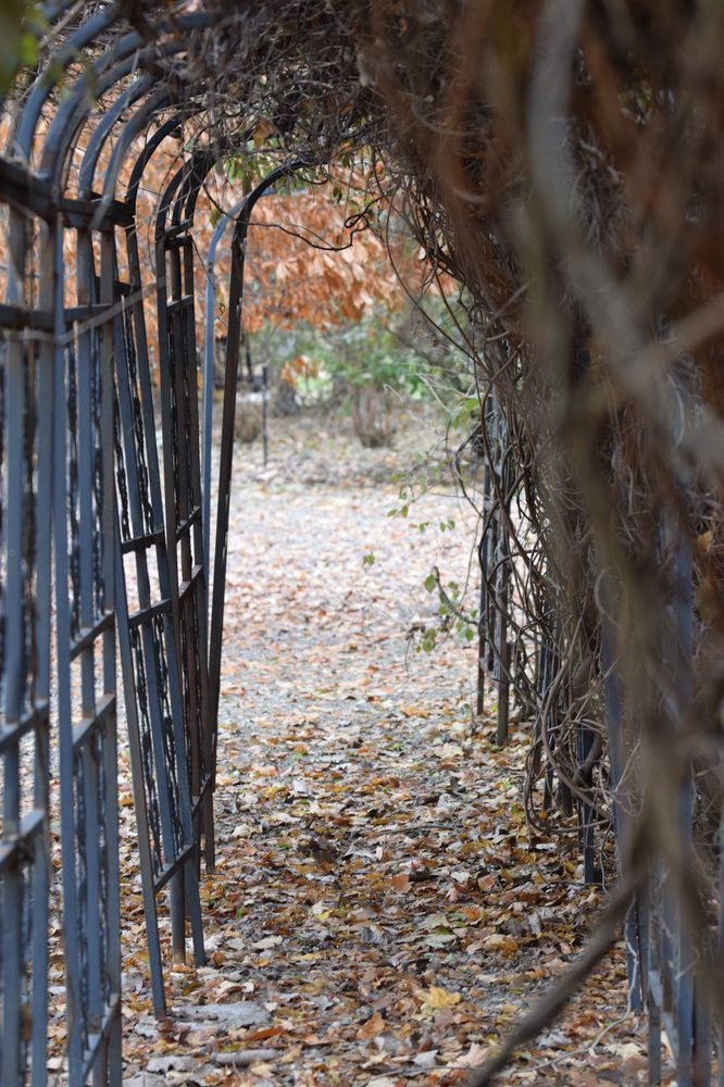 Overlook Farm: 16095 Hwy W, Clarksville, MO