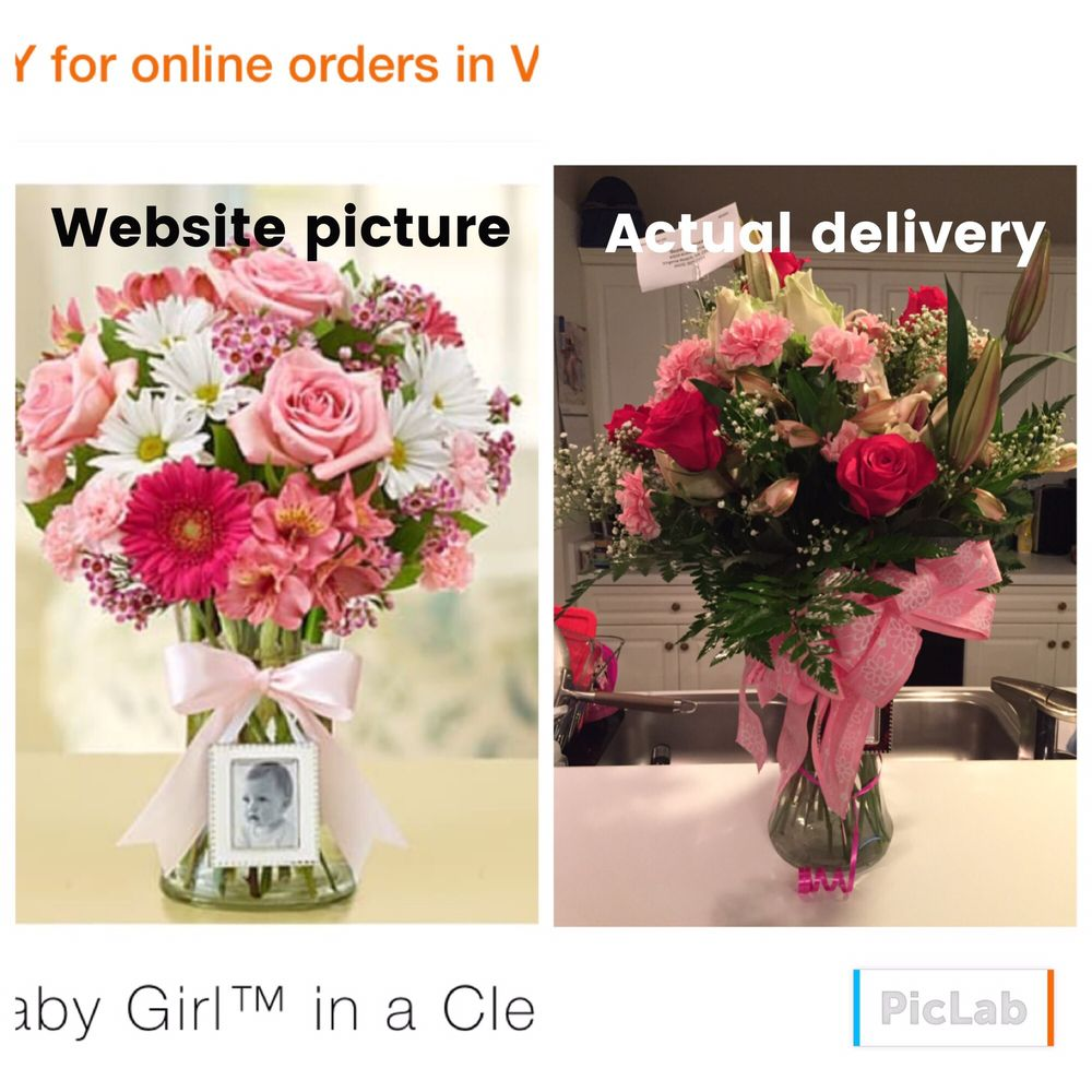 Great neck florist gifts 11 reviews florists 3209 virginia great neck florist gifts 11 reviews florists 3209 virginia beach blvd virginia beach va phone number products yelp izmirmasajfo