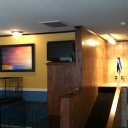 Mr Pooch Pet Grooming Boutique - 430 E Falmouth Hwy, East