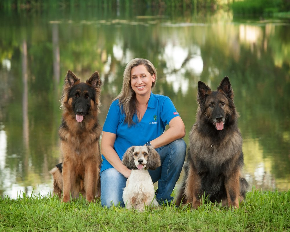 ParkView Animal Hospital: 3720 54th Ave, St Petersburg, FL