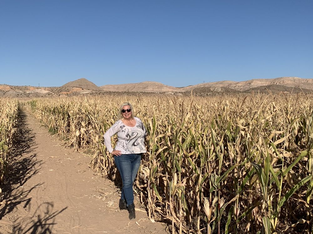 Moapa Valley Cornmaze