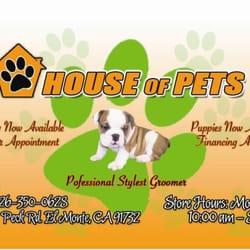 monte house pets