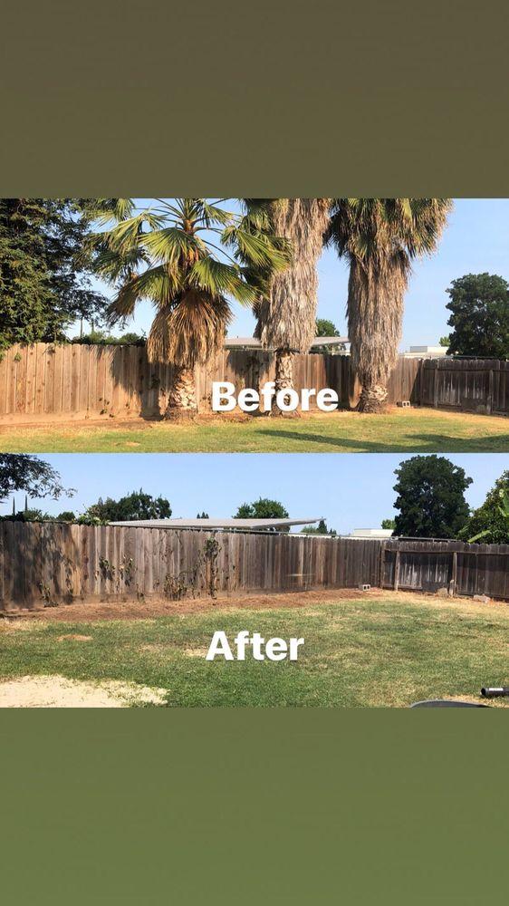 Anderson Tree Service: Merced, CA