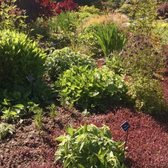 Photo Of Mendocino Coast Botanical Gardens   Fort Bragg, CA, United States.  Plantings