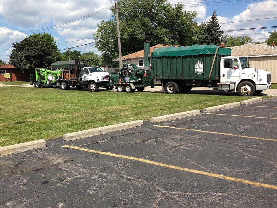 Handy Feller Tree Service: 15618 Oconnor Ave, Allen Park, MI