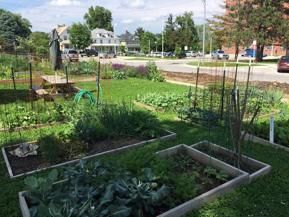 Community garden - Yelp