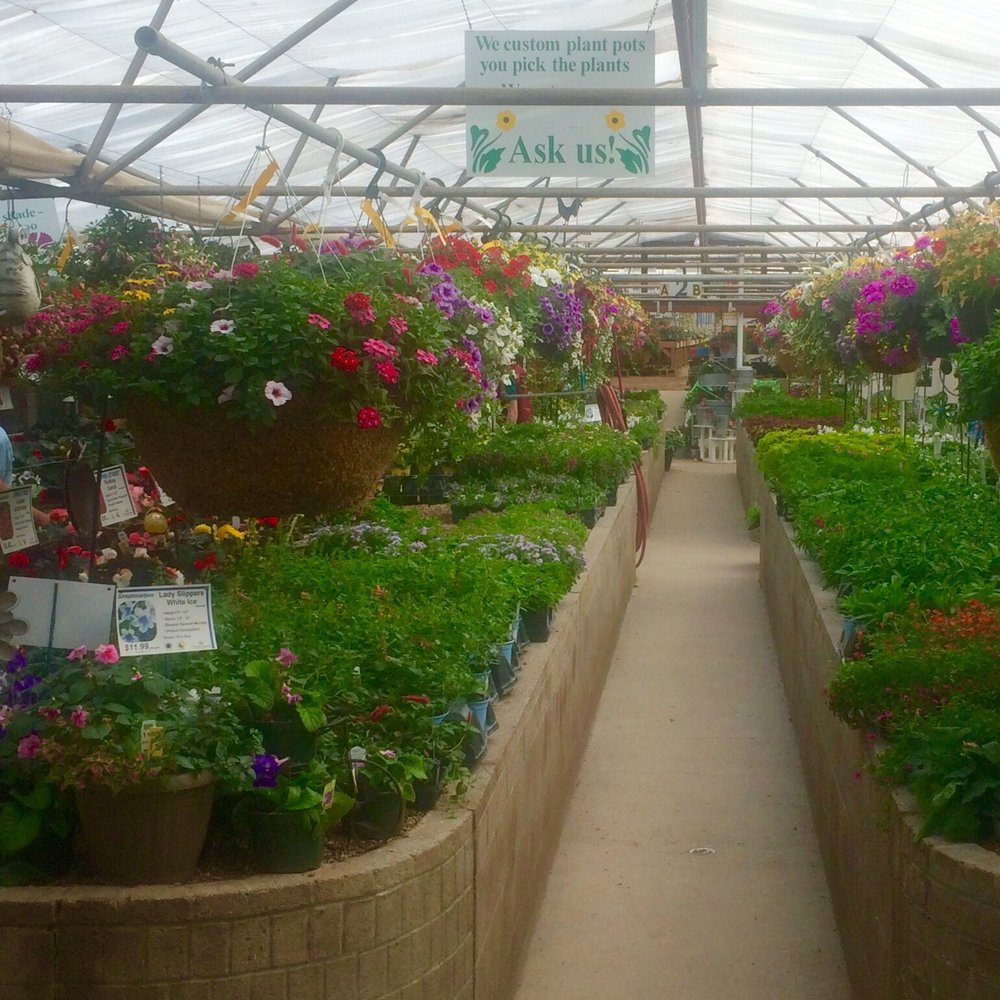 Plantorium Greenhouse & Nursery: 2933 County Rd 54G, Fort Collins, CO