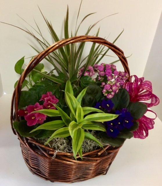 Accents et cetera Gift Baskets: 1225 244th Ave NE, Sammamish, WA