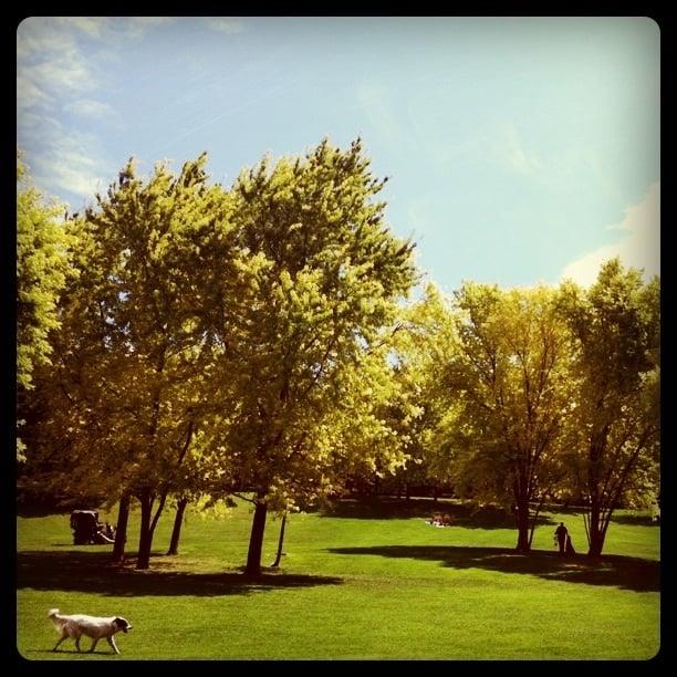 Parc de la torse park forests 69 cours gambetta aix for Aix en provence cours de cuisine