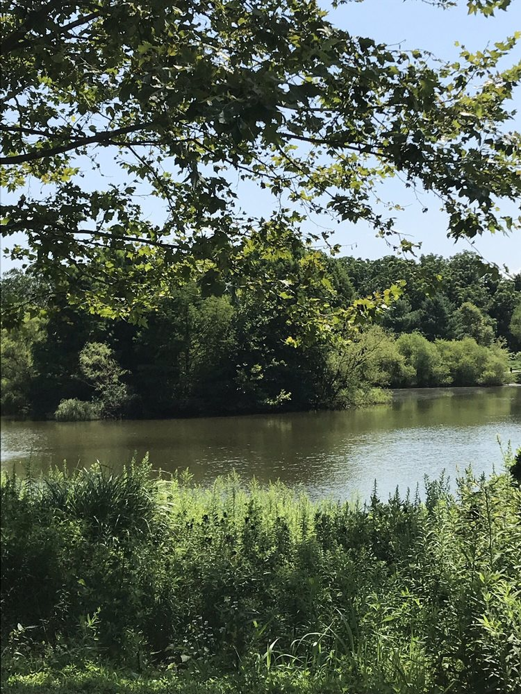 Wilson Farm Park: 801-899 Chesterbrook Blvd, Chesterbrook, PA