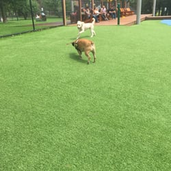Beaus Dog Park