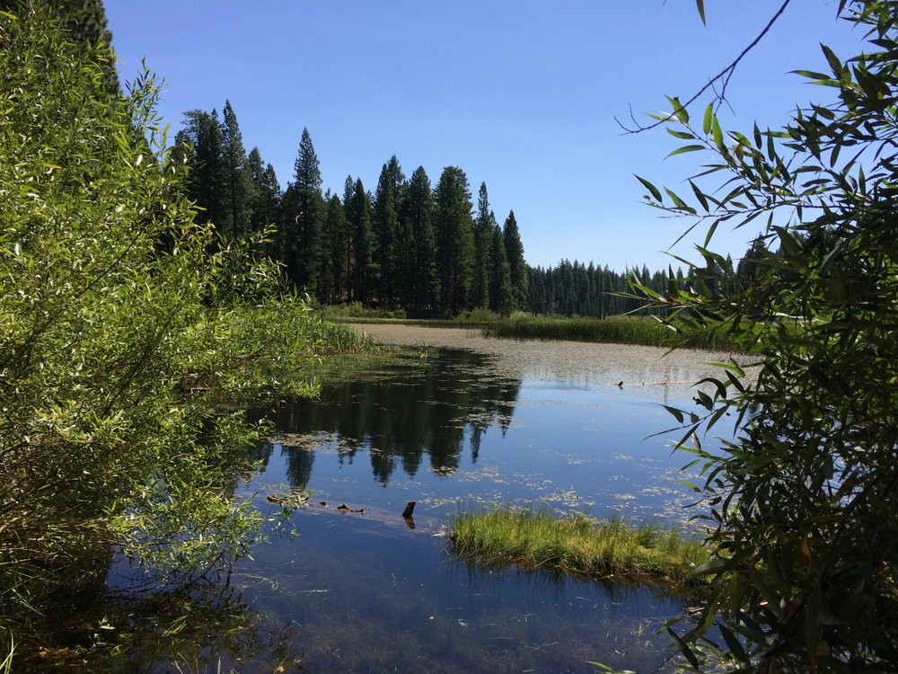 Madora Lake Loop Trail: Graeagle-Johnsville Rd, Johnsville, CA