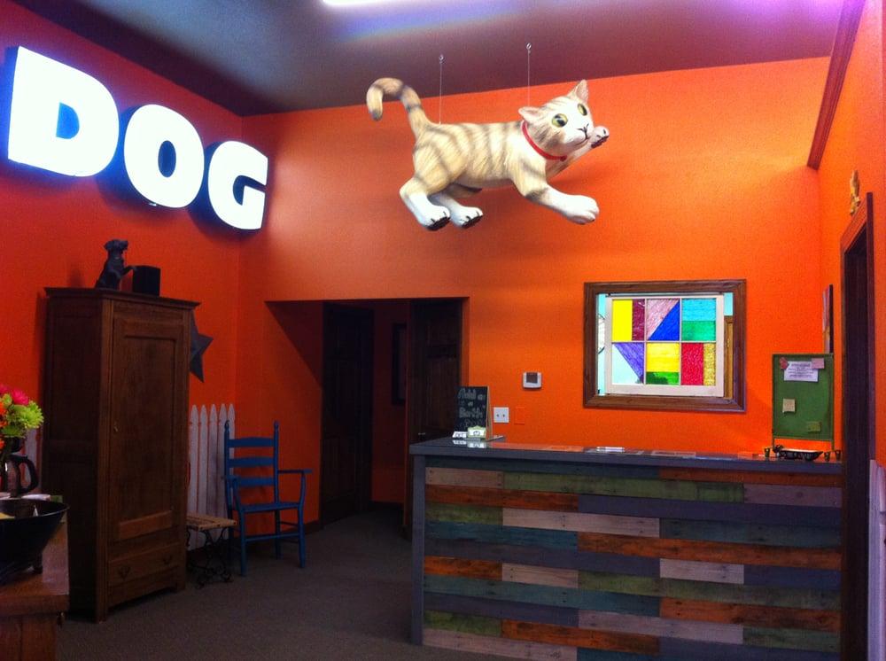 Fat Cat's Dog Boarding: 15395 Briar Rd, Basehor, KS