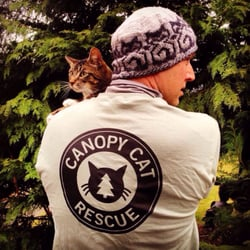 canopy cat rescue pet services woodinville wa phone number yelp