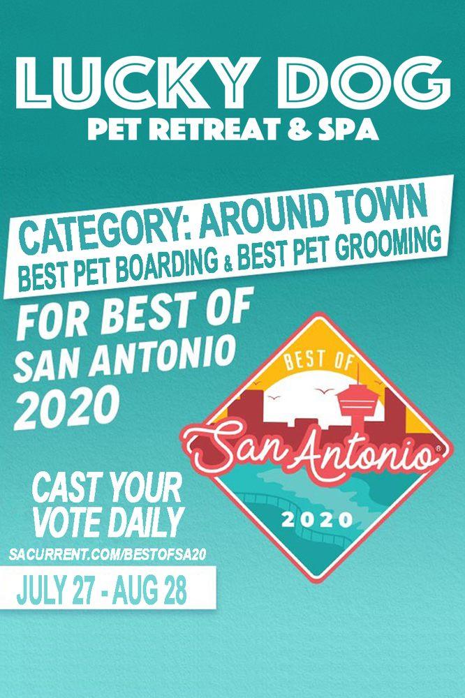 Lucky Dog Pet Retreat & Spa: 2267 NW Military Hwy, San Antonio, TX
