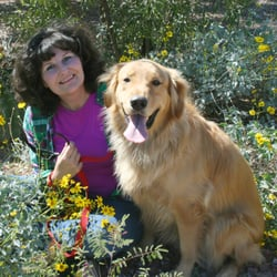 Dog Training Boarding Tucson Az