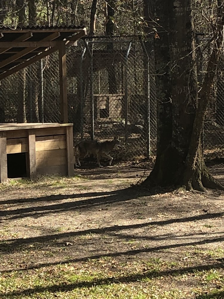 Sewee Visitor and Environmental Education Center: 5821 N Hwy 17, Awendaw, SC