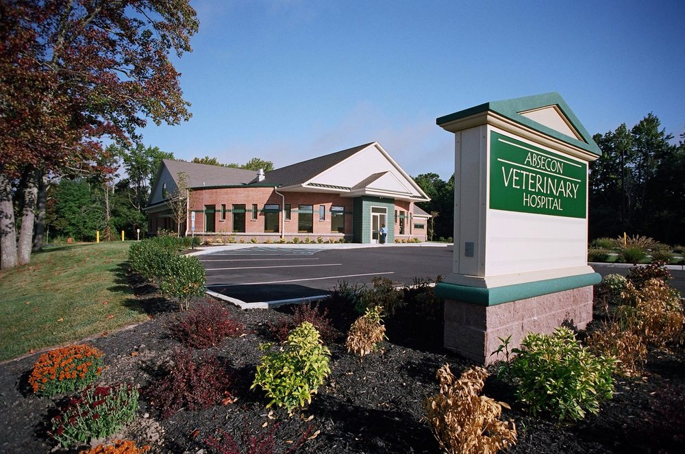 Absecon Veterinary Hospital: 195 S New Rd, Absecon, NJ