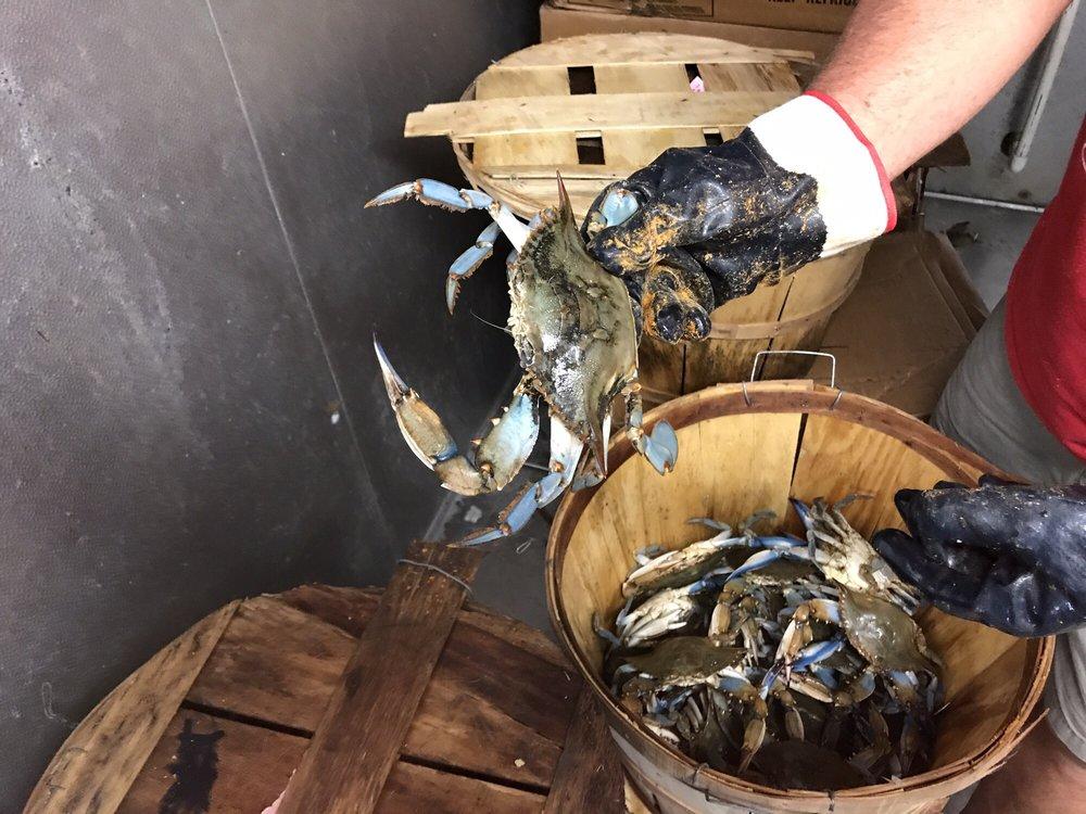 Cranky Crab: 6307 Main St, Queenstown, MD