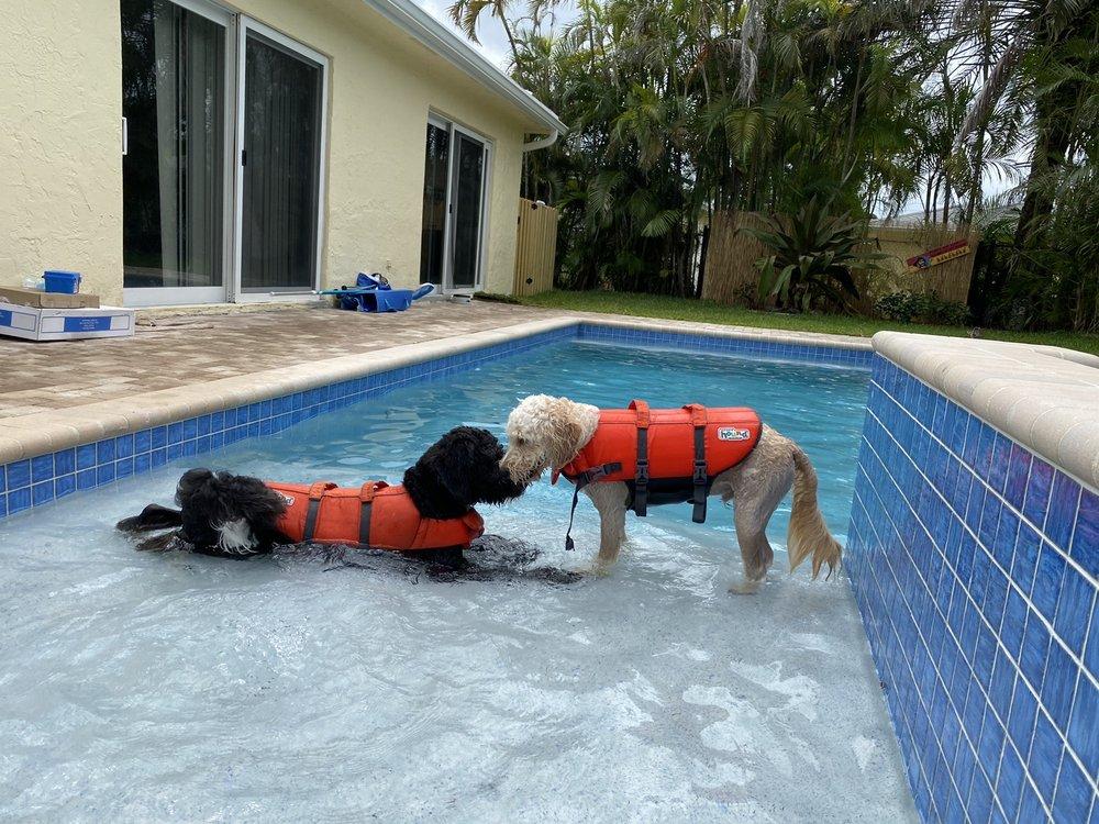 LaGasse Pool Construction Company: 2877 W Broward Blvd, Fort Lauderdale, FL